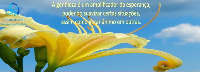 A gentileza é um amplificador da esperança