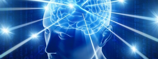Perspectivas da INTUIÇÃO - O neurocientista.