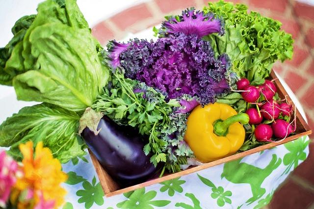 Vegetarianismo - Entrevista com o Dr. Eric